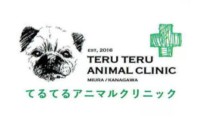 てるてるアニマルクリニック  動物看護師 トリマー 神奈川県三浦市