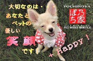 ぽち乃家(ポチノヤ)ペットホームサービス*創業18年・実績8万件*人と動物の幸せな共生社会を目指して*東京都のペットシッター・ドッグトレーナー