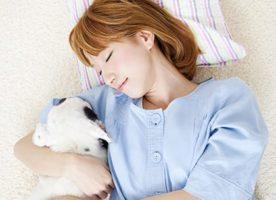動物看護師急募! 代々木公園犬猫病院